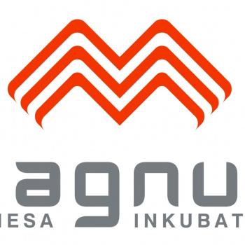 Biznesa inkubators Magnus