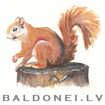 BALDONEI.LV